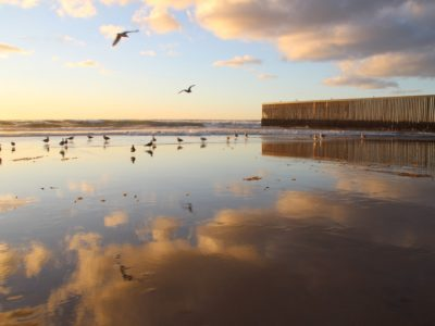 International borders Mexico-USA on Pacific Coast