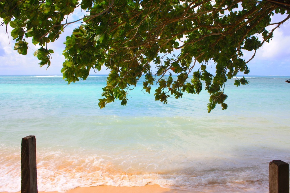 samoa-beach-fale-photos