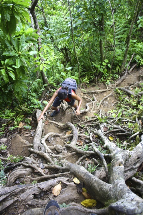 Cook Islands Hiking Camping