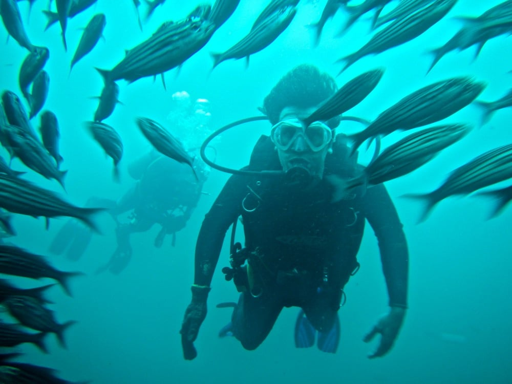 Diving the Galápagos Islands