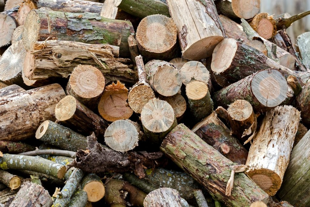 How to build a campfire using logs