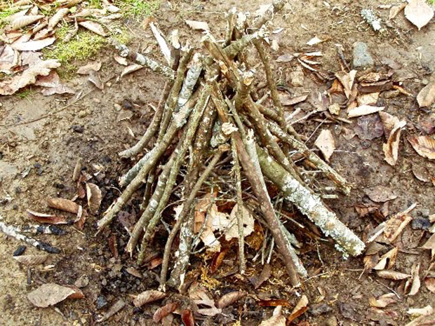 How to build a campfire – the tepee type