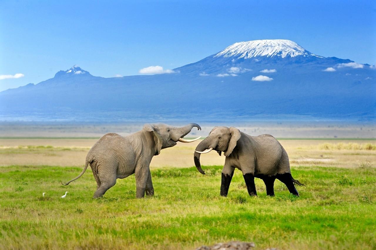 Non-technical-mountains - kilimanjaro