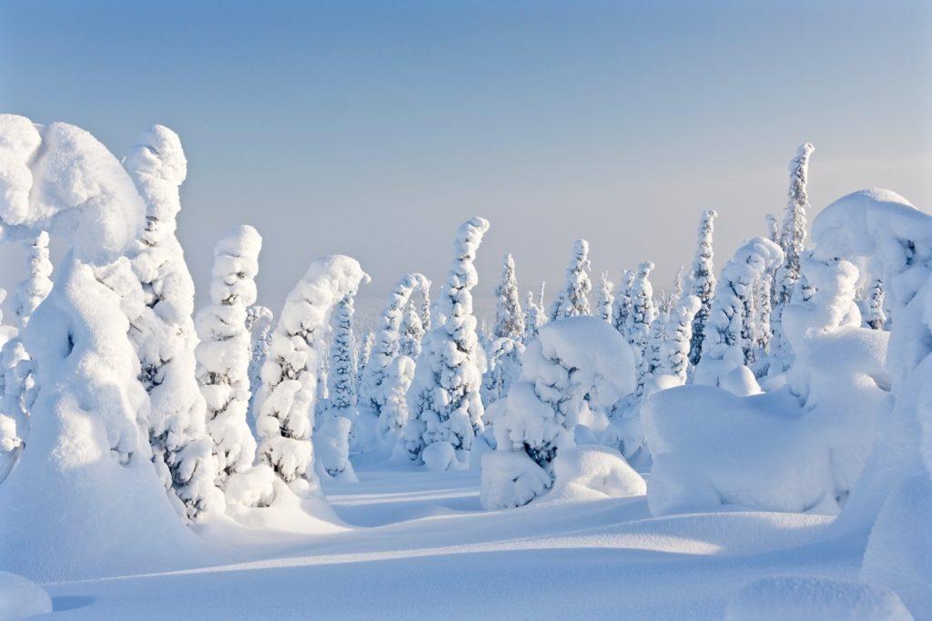 Hardest language to learn: Finnish Laplan