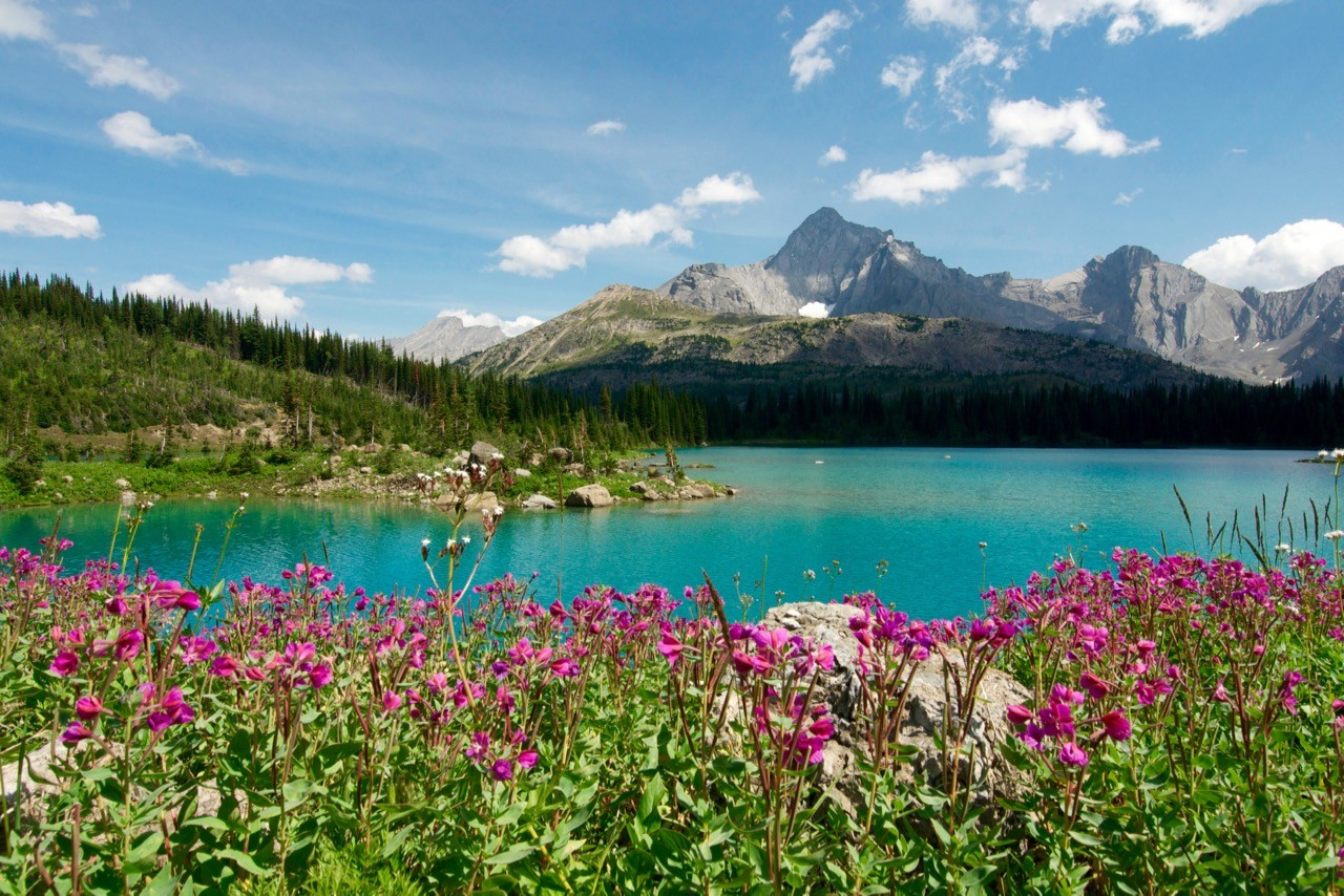long-distance hiking trails canada