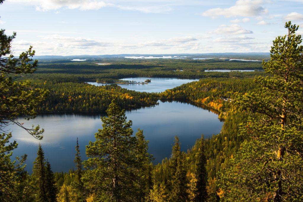 El sendero del anillo del oso en Finlandia tiene uno de los aires más limpios del mundo - Finlandia