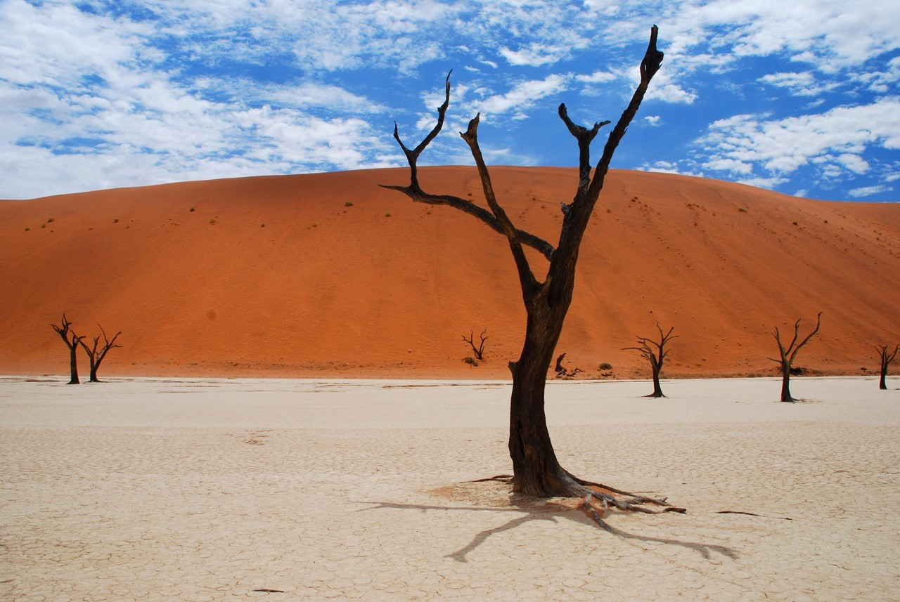 best-national-parks-in-the -world-namib