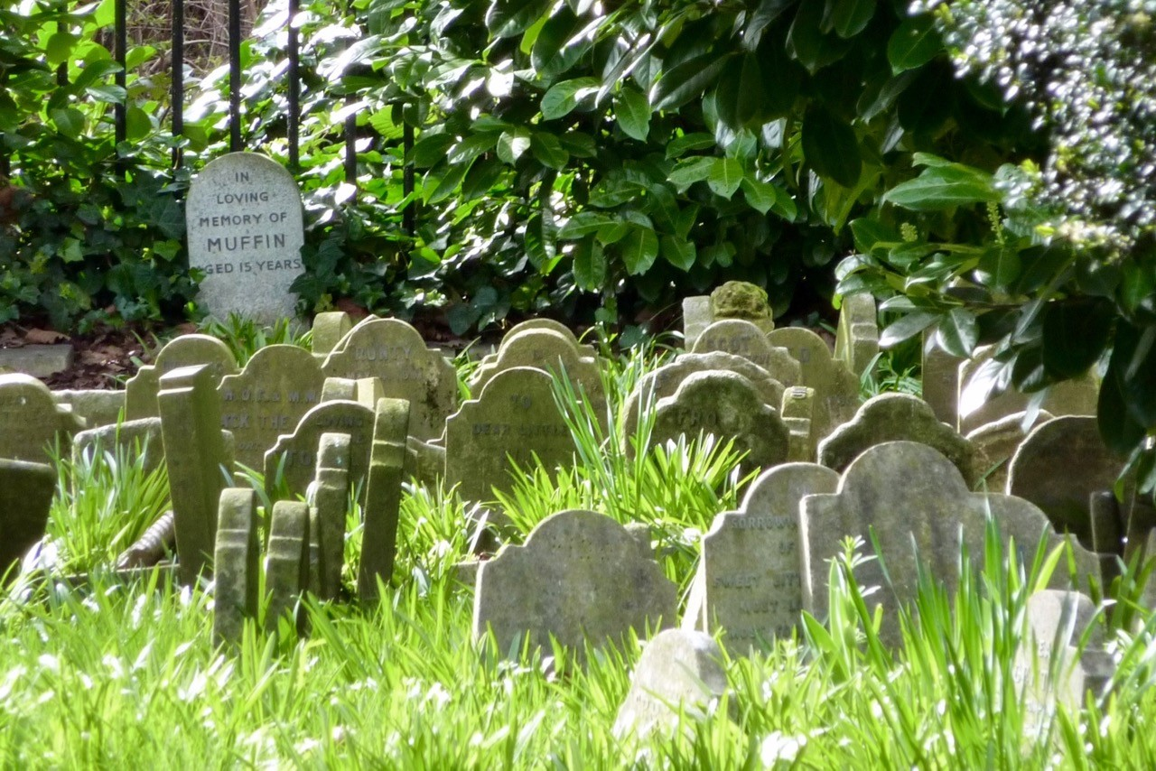 history of london pet cemetry