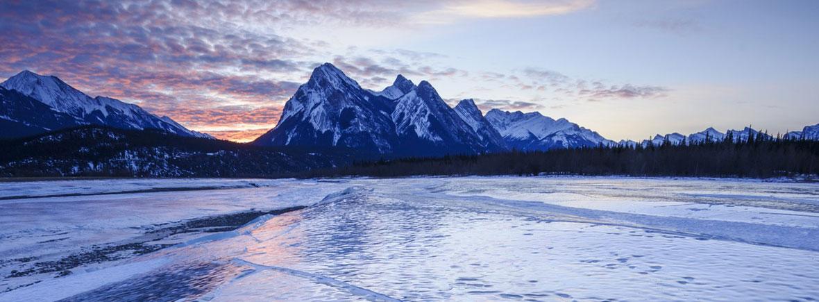 Arctic-vs.-Antarctic-feat-image-canada