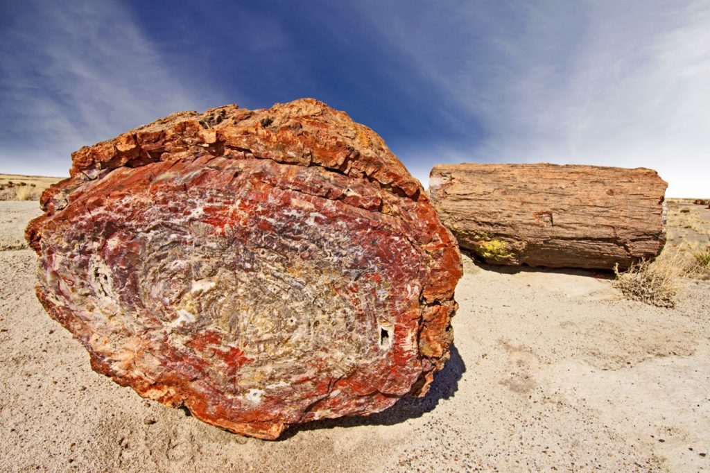 us-national-parks-petrified forest