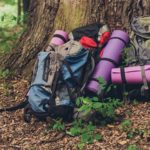 How to choose a backpack: a beginner's guide