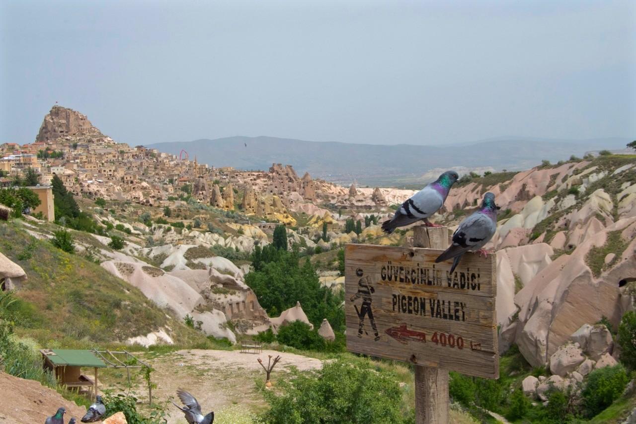 Cappadocia hikes - 1 pigeon valley 1