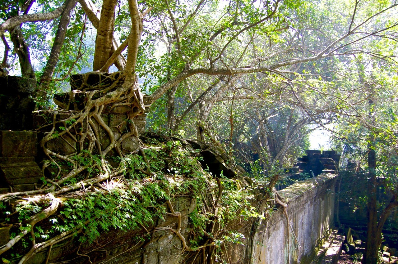 best time to visit Angkor Wat: Beng Mealea