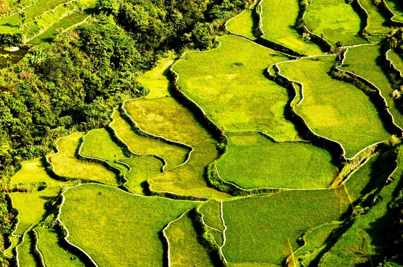 landscapes-affected-by-climate-change-philippines