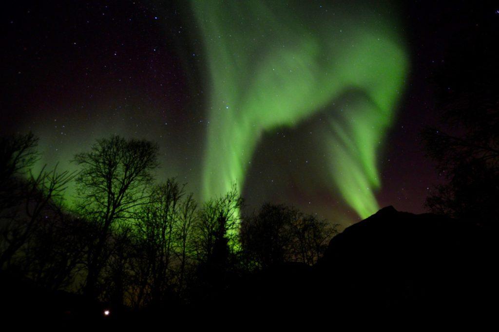 20 интересных фактов о Арктике 20 интересных фактов о Арктике northern lights in tromso 12 1024x682
