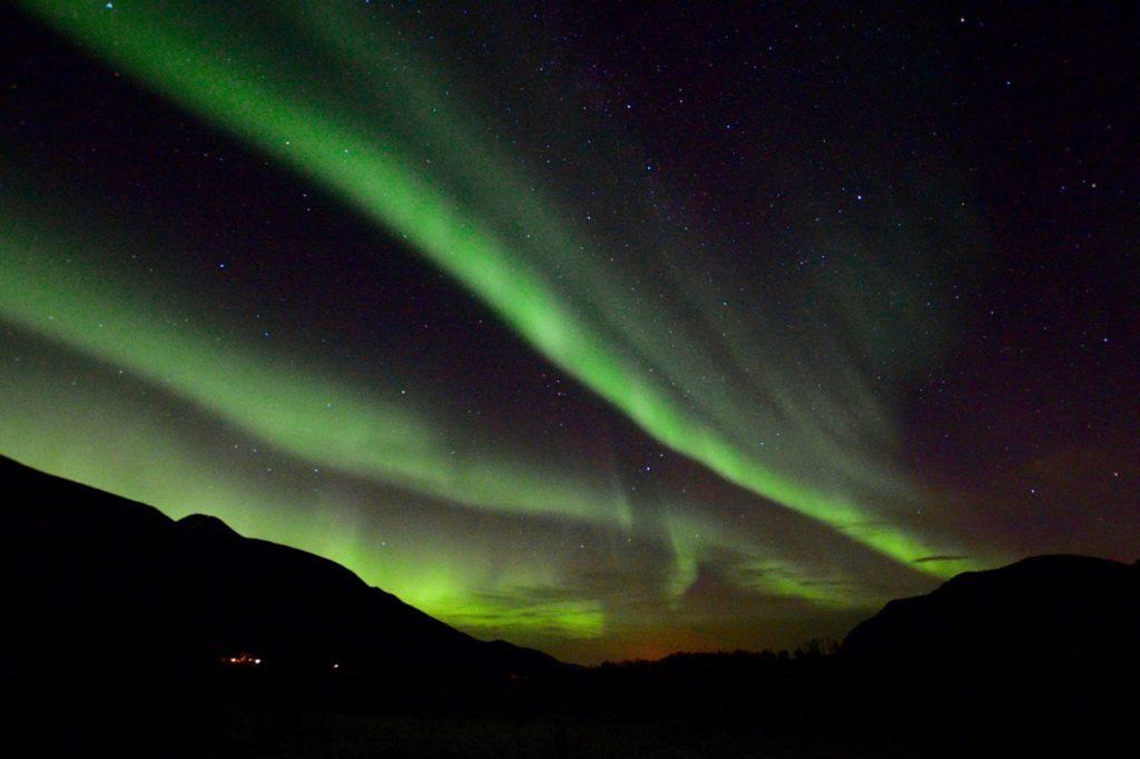20 интересных фактов о Арктике 20 интересных фактов о Арктике northern lights in tromso 16 1024x682