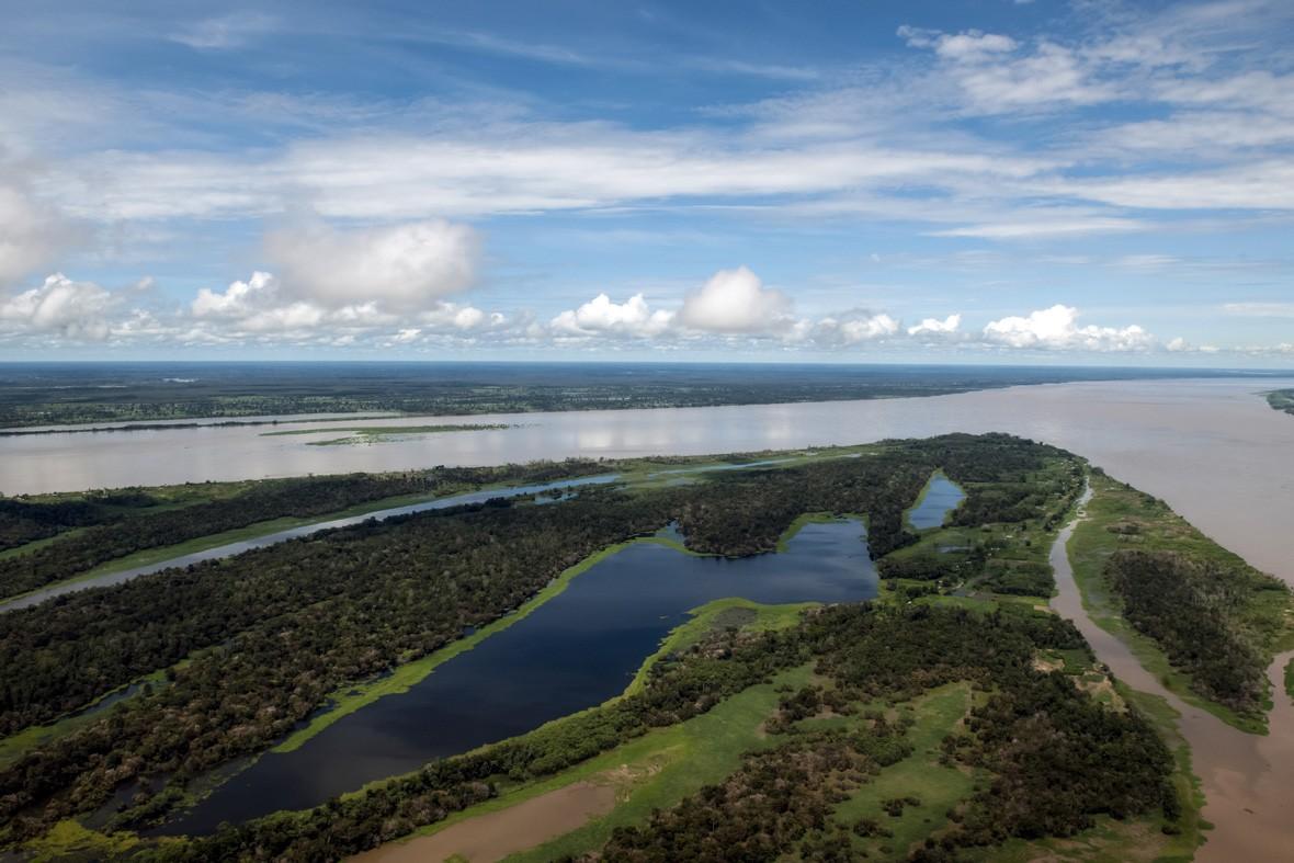 climate change: amazon