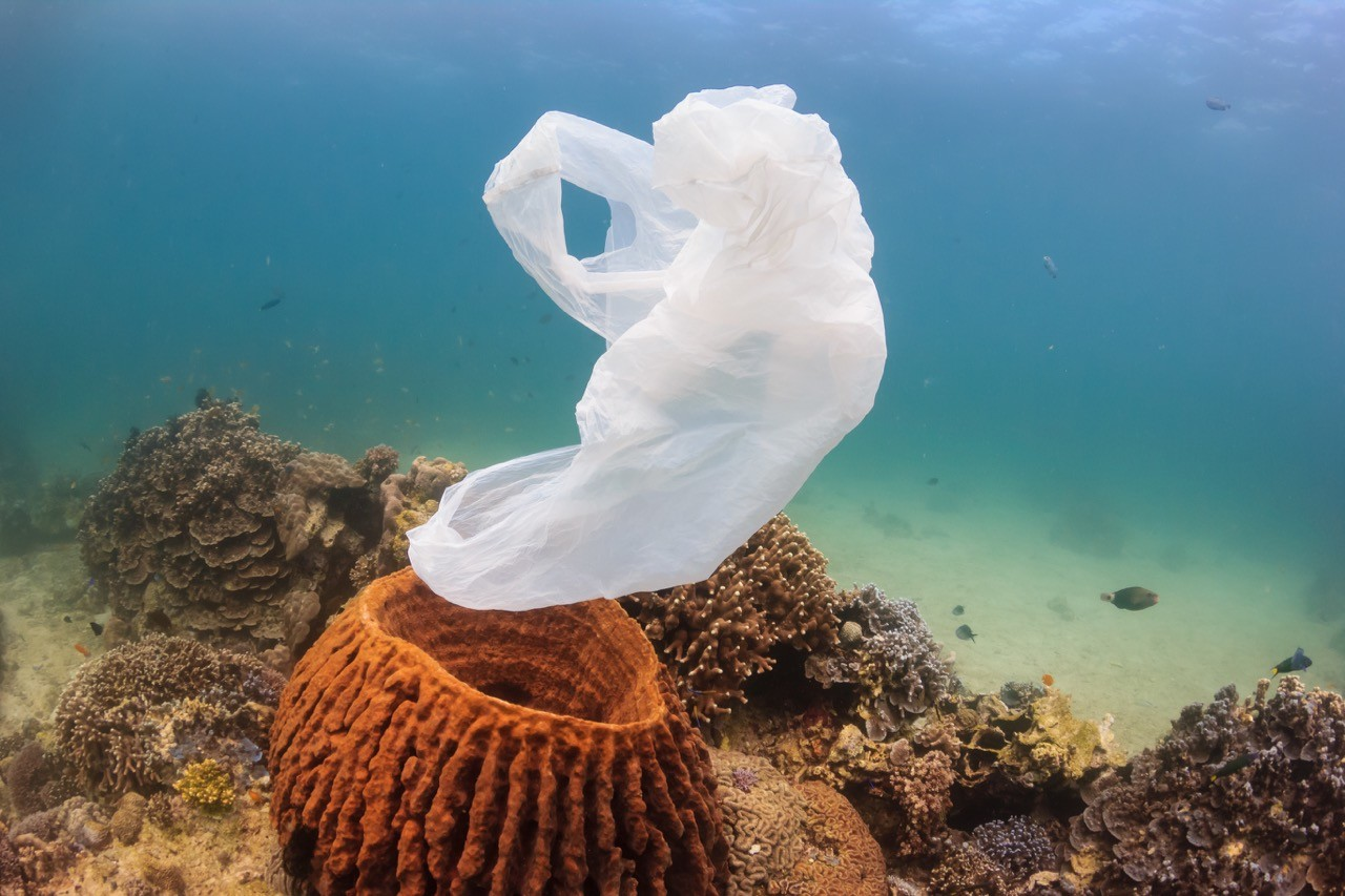 easy ways to travel green - plastic bag