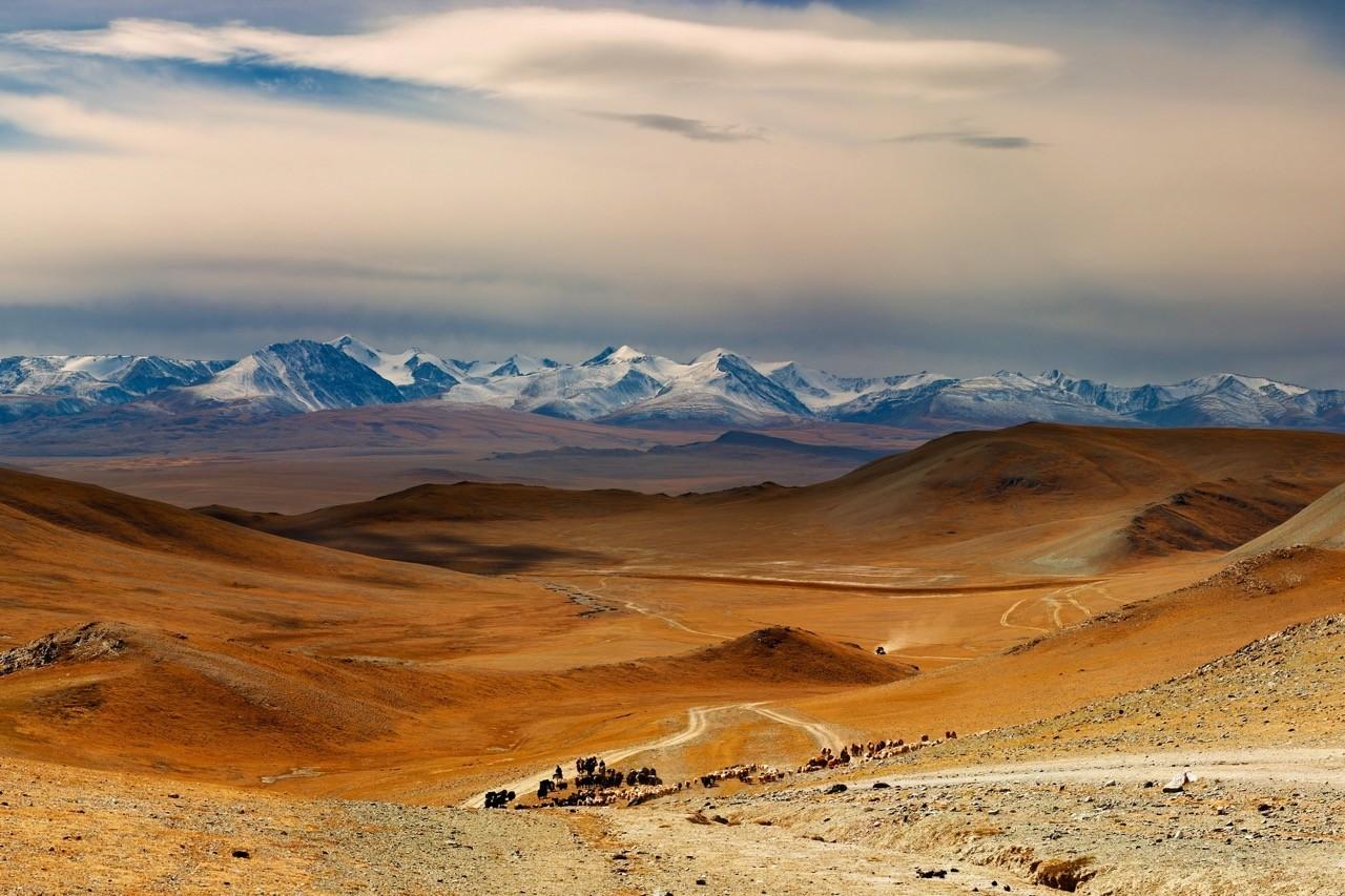 Mongolia country profile