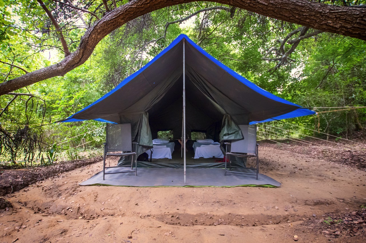 camping at Udawalawe National Park