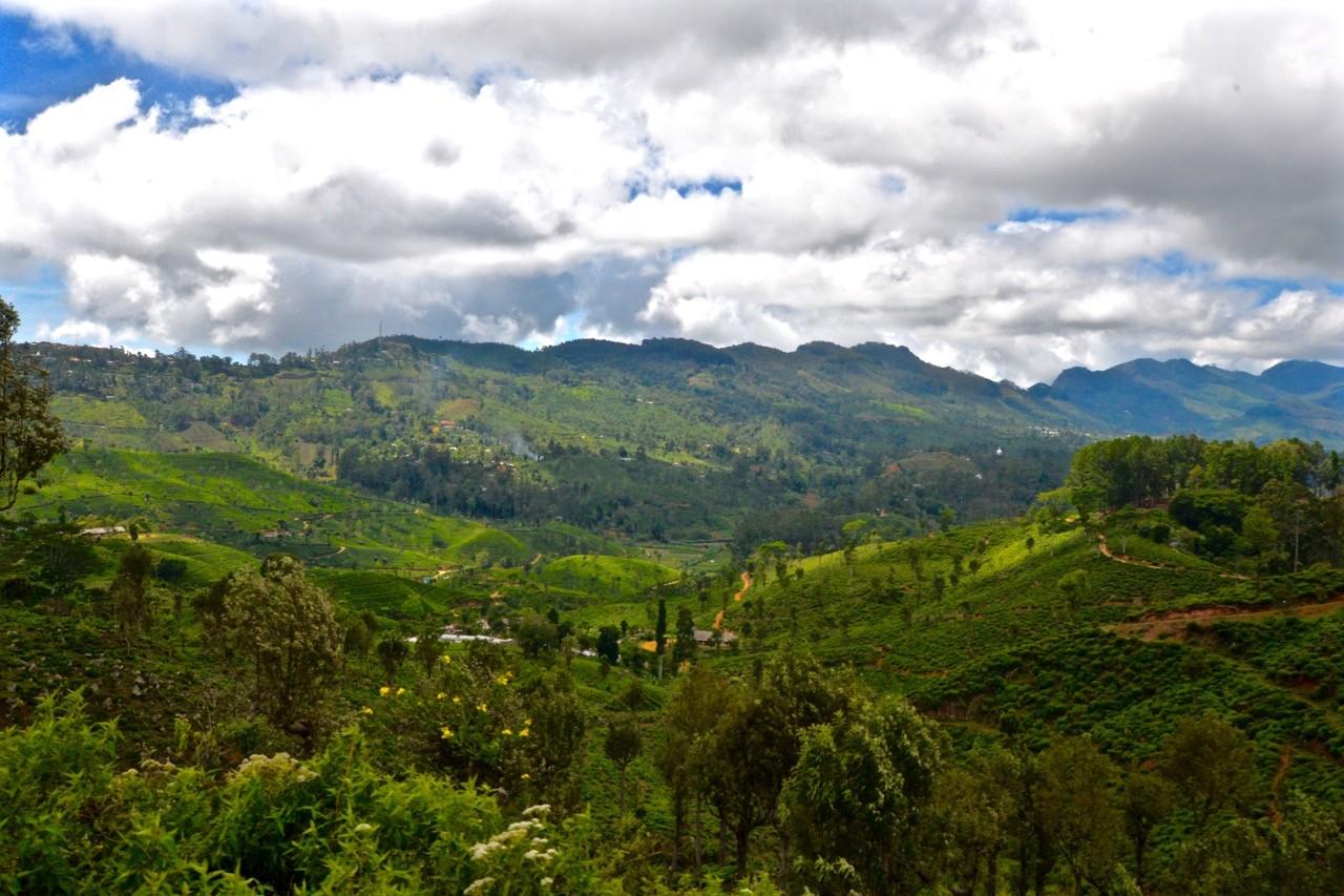 Hiking trails around Ella Sri Lanka - Idalgashima 5