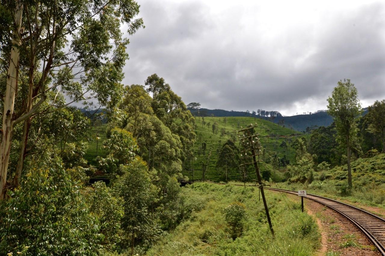 Hiking trails around Ella Sri Lanka - Pattipola to Haputale