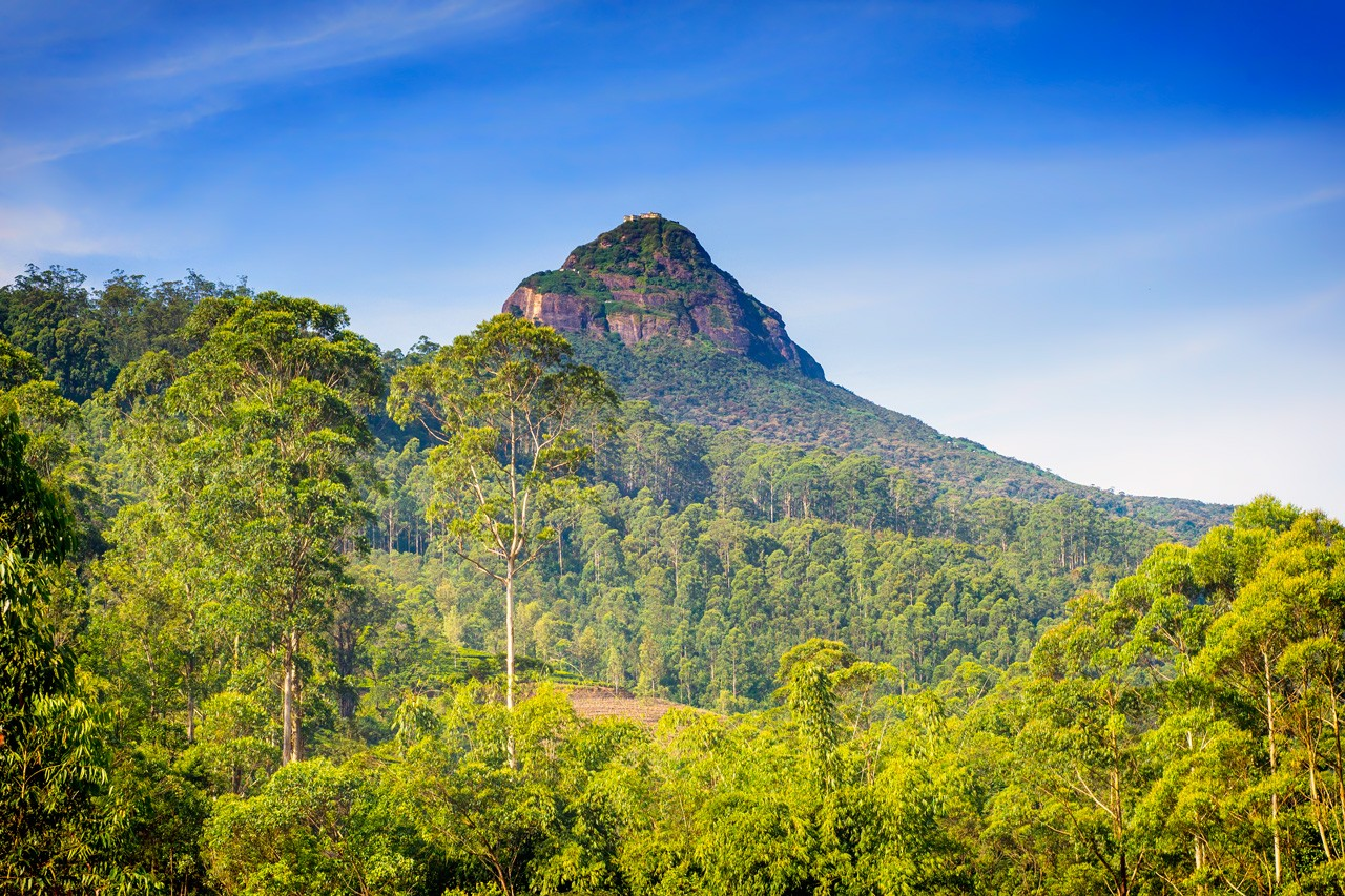interesting-facts-about-sri-lanka-adams-peak