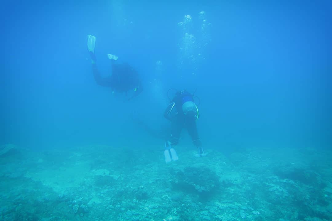 Diving at Blue Bay Mauritius-6