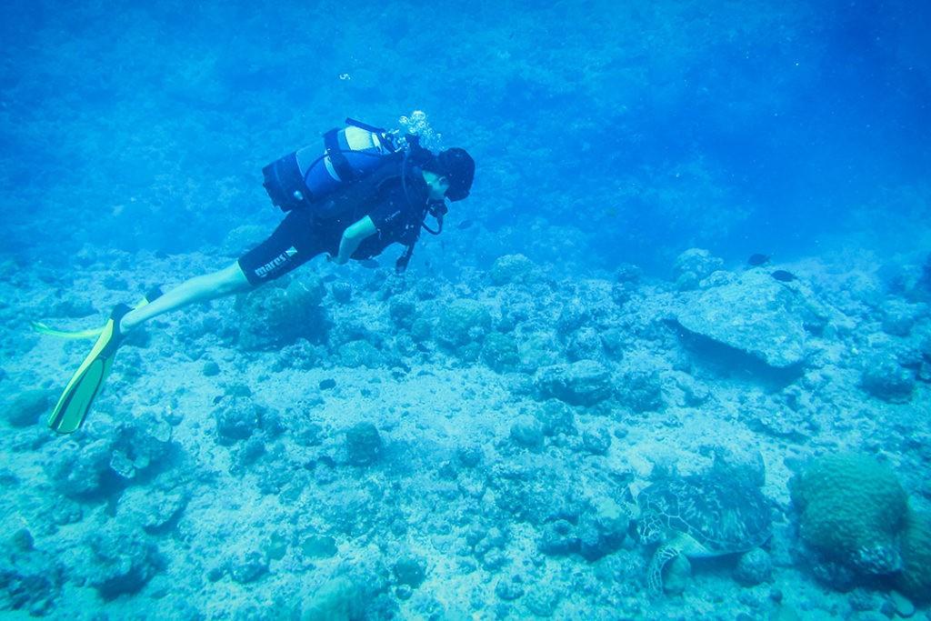 Kia  Diving at Trou aux Biches, Mauritius