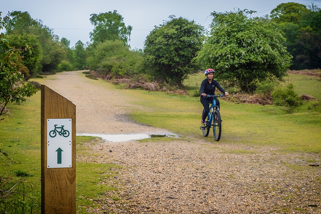 5 Of The Best New Forest Cycling Routes Atlas Boots