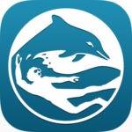 scuba exam scuba diving apps