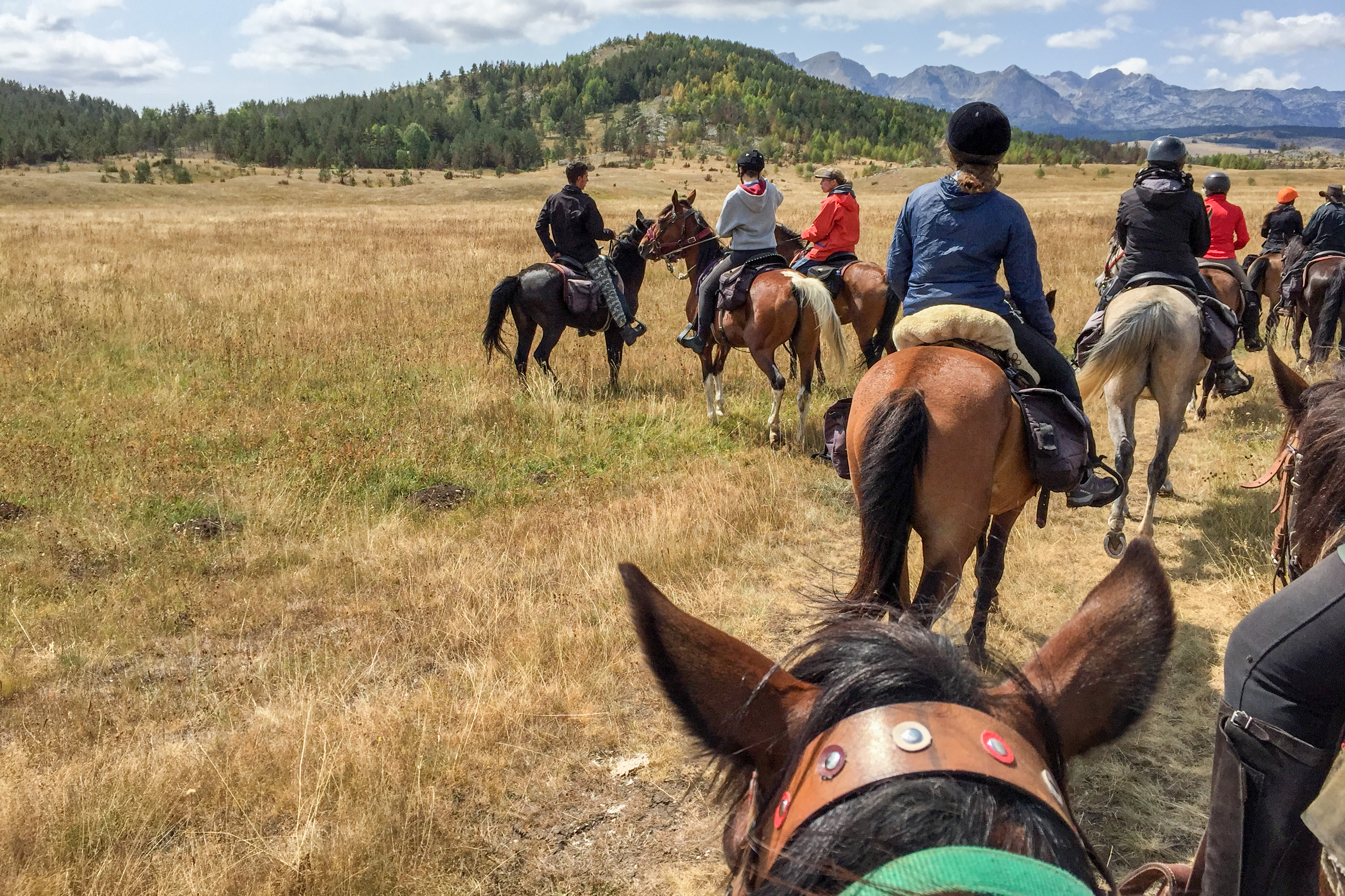 Your fellow riders can offer a host of horse riding tips
