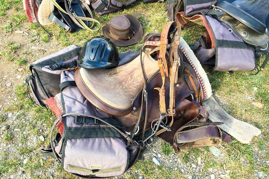 Horse riding tips: Familiarise yourself with the equipment