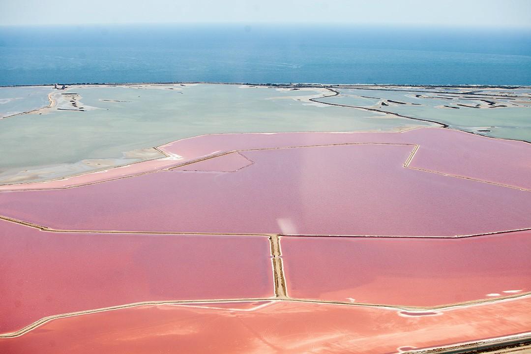 Camargue Salt Flats