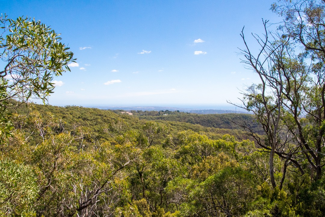 Mount Lofty walking trails 4