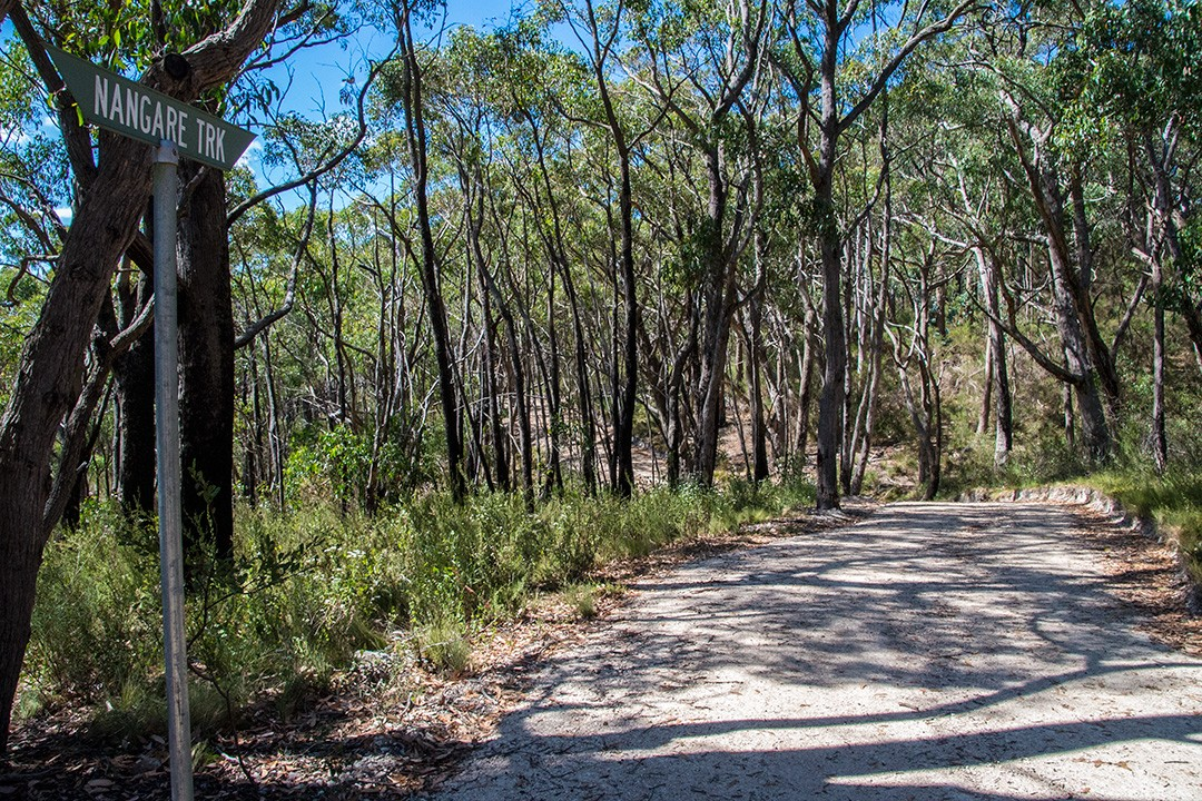 Mount Lofty walking trails 6