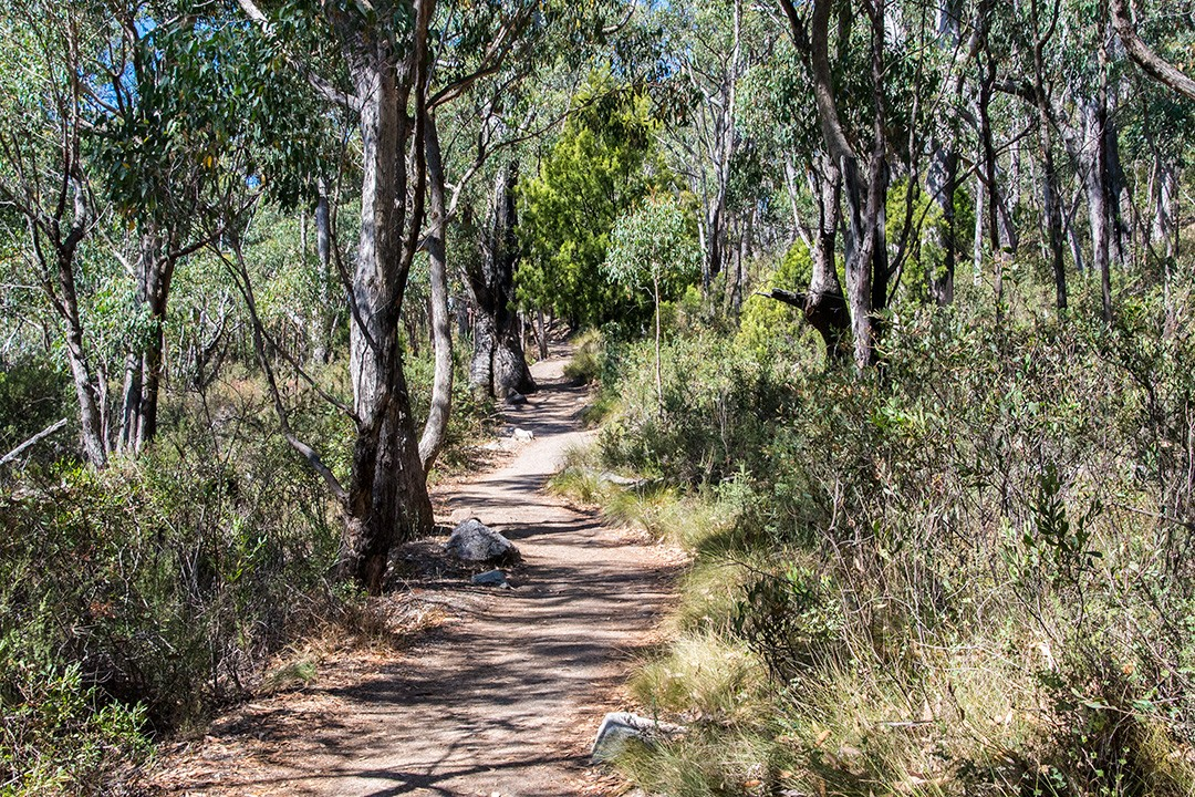 Mount Lofty walking trails 8