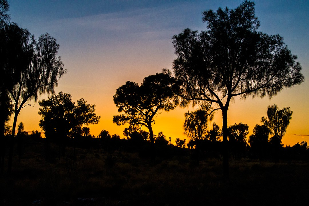 Darkness falls in the outback