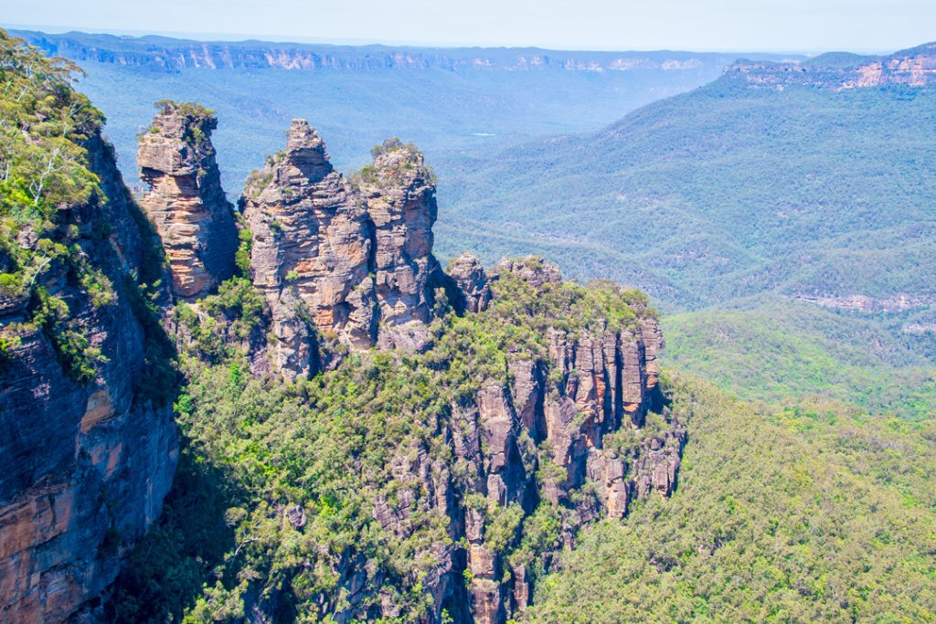 largest rainforests in the world blue mountains
