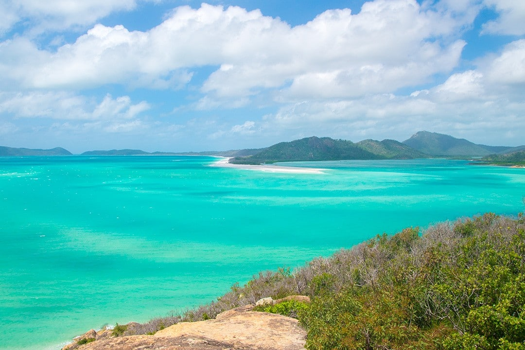 Stunning blue waters excellent for swimming at White haven Beach