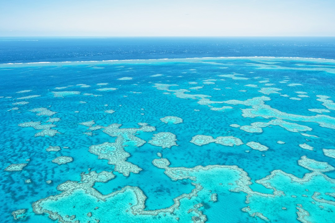 Interesting facts about The Great Barrier Reef: it is the world's largest living structure