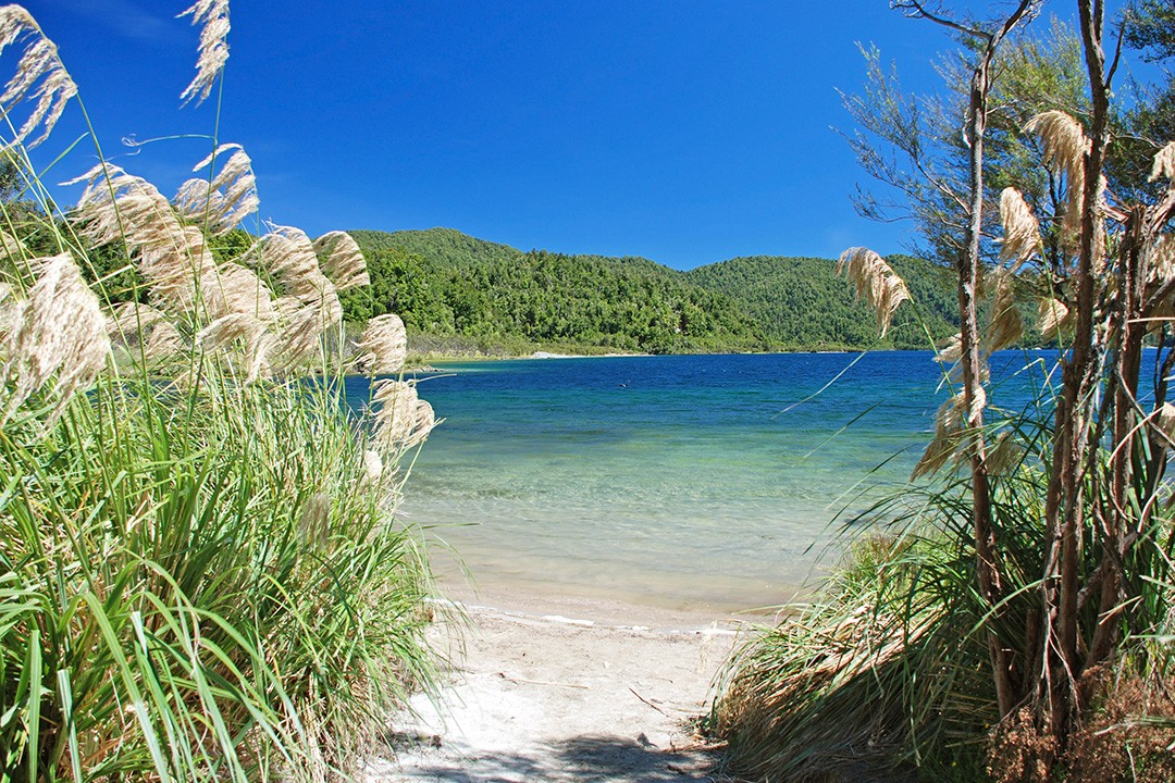 Great Walks of New Zealand Lake Waikaremoana