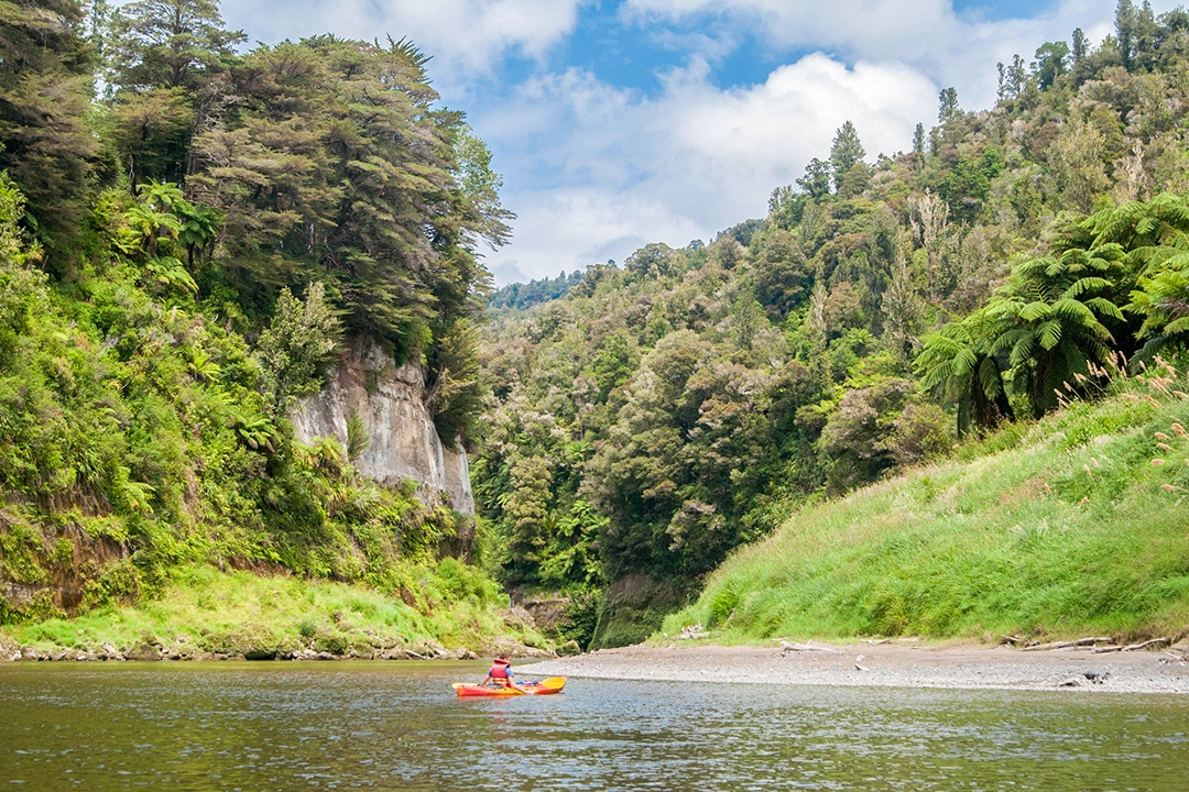 Great Walks of New Zealand Whanganui River