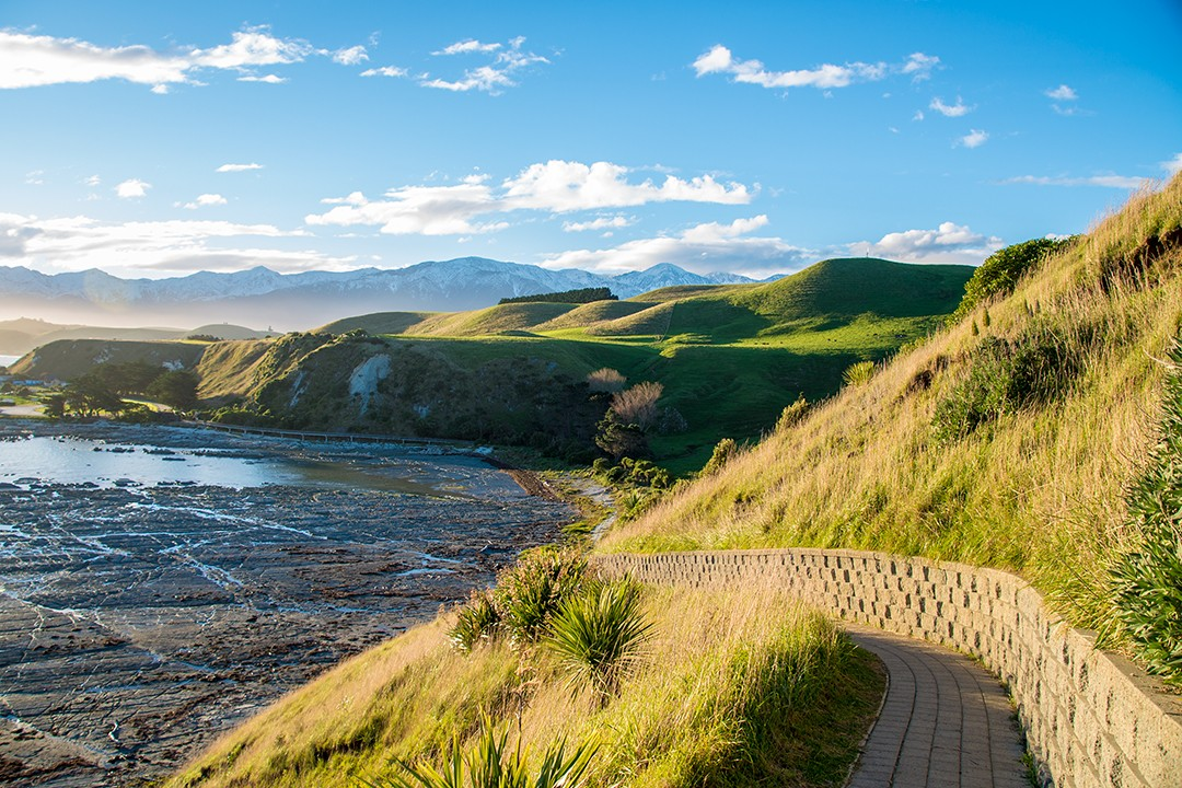 South Island short walks new zealand Kaikoura