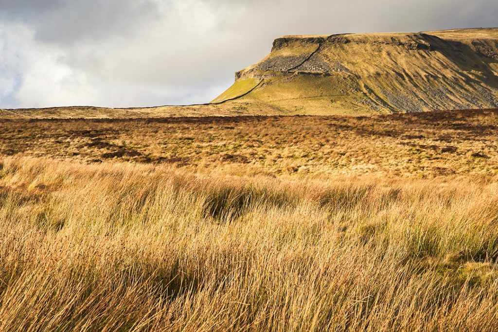 best views in the Yorkshire Dales Pen y Ghent 1