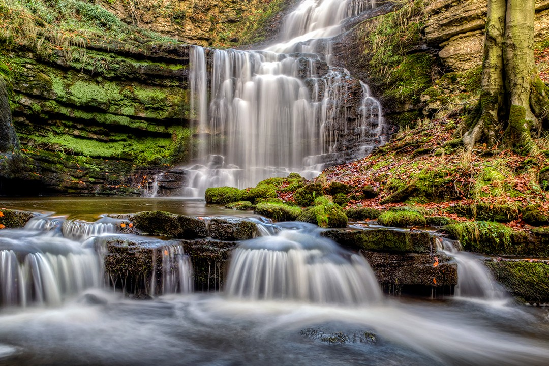 best views in the Yorkshire Dales Scaleber Force