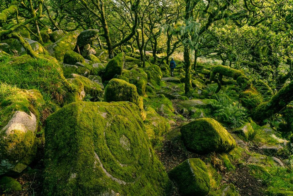 Fairytale landscape at Wistman's Wood natural wonders in the uk