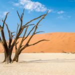 elf-drive safari through Namibia Sossusvlei