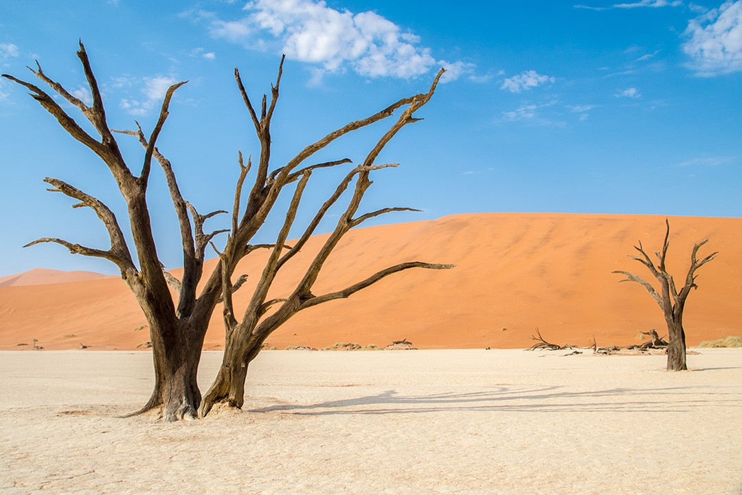 Deadvlei is another surreal Namibian landscape