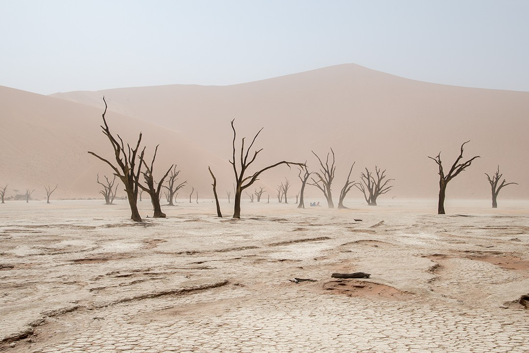 tips for visiting Sossusvlei in Namibia sandstorm